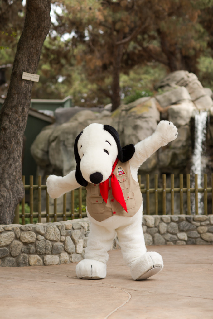 Camp Snoopy. Foto: Knott's Berry Farm